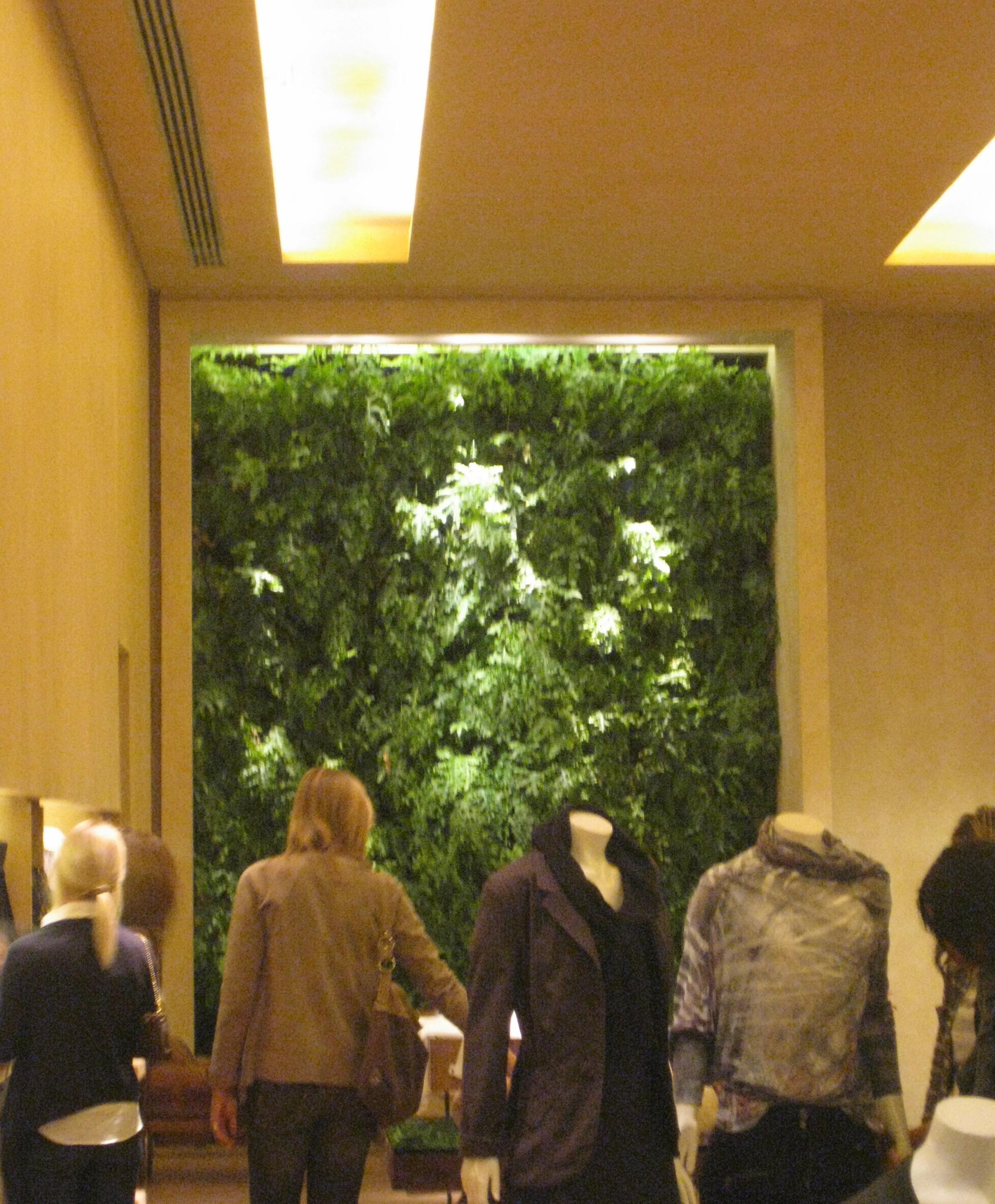 jardim vertical sacada:Jardim vertical na Loja Sacada na Oscar Freire, comprova o